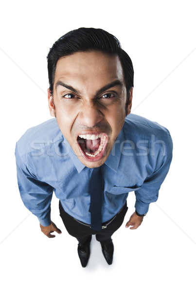 бизнесмен бизнеса портрет галстук гнева Сток-фото © imagedb