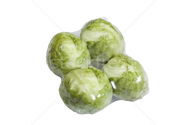 Gıda yeşil plastik paket paketleme Stok fotoğraf © imagedb
