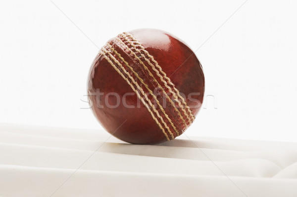 Cricket Ball Sport Leder Sicherheit Stock foto © imagedb