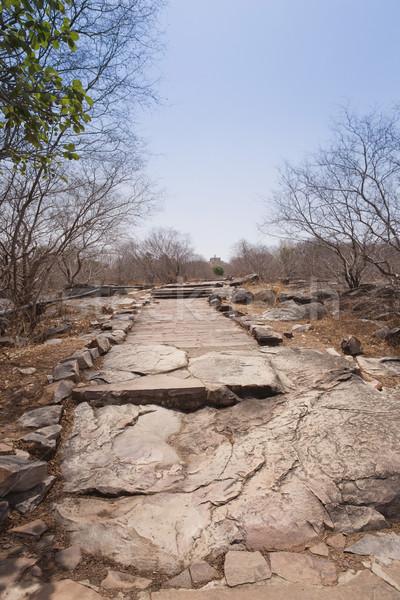 Stone pathway at Buddhist pilgrimage site, Sanchi, Madhya Prades Stock photo © imagedb