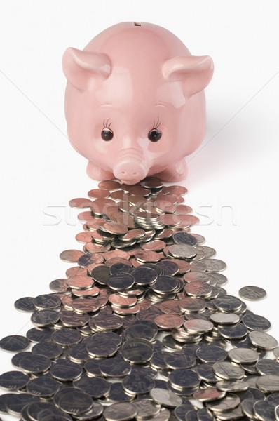 érmék persely üzlet csoport pénzügy disznó Stock fotó © imagedb