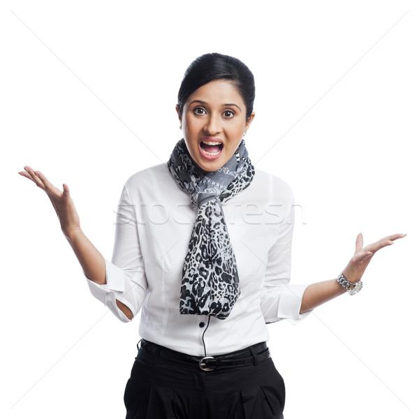 портрет деловая женщина бизнеса женщину молодые Сток-фото © imagedb