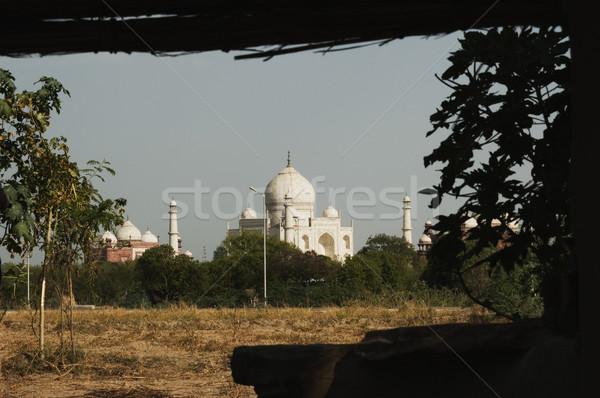 Campo mausoleo Taj Mahal albero bianco torre Foto d'archivio © imagedb