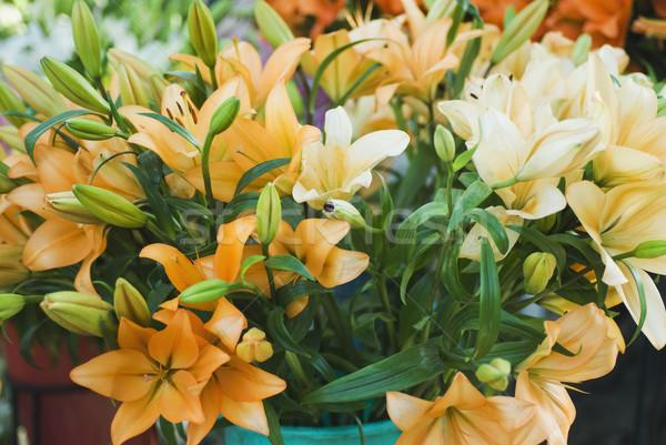 Közelkép mesterséges virágok virág Új-Delhi India Stock fotó © imagedb