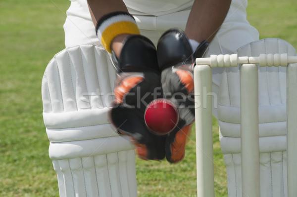 Piedi dietro legno sport sicurezza sicurezza Foto d'archivio © imagedb