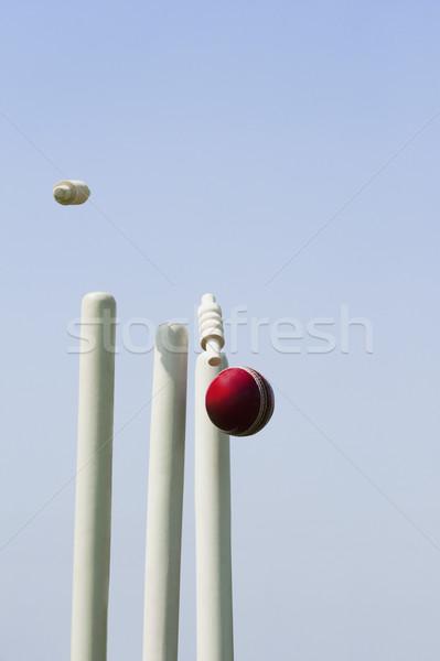Cricket pelota cielo madera fotografía esfera Foto stock © imagedb