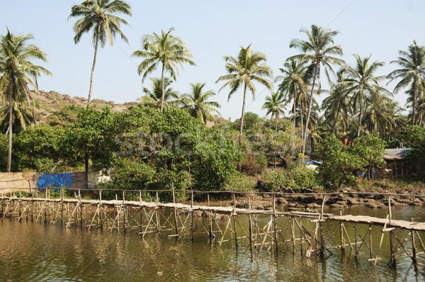Fából készült híd folyó Goa India égbolt Stock fotó © imagedb