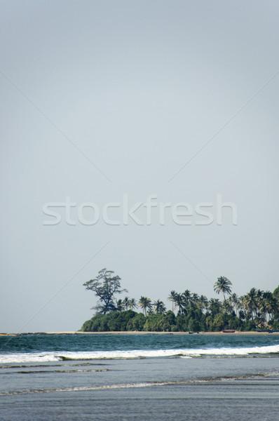 Stockfoto: Golven · strand · goa · Indië · zee · zomer