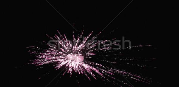 pims_20101106_sa0229.jpg Stock photo © imagedb