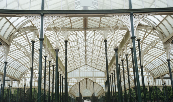 Vidro casa jardim botânico jardim arquitetura estrutura Foto stock © imagedb