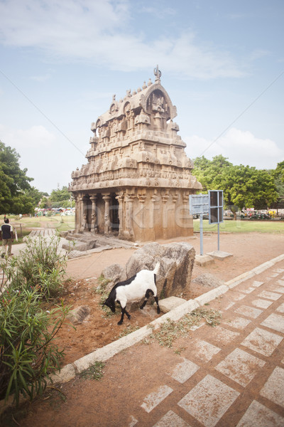 Ancient Ganesh Ratha Temple at Mahabalipuram, Kanchipuram District, Tamil Nadu, India Stock photo © imagedb