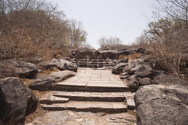 Bedevaart plaats steen pad Stockfoto © imagedb