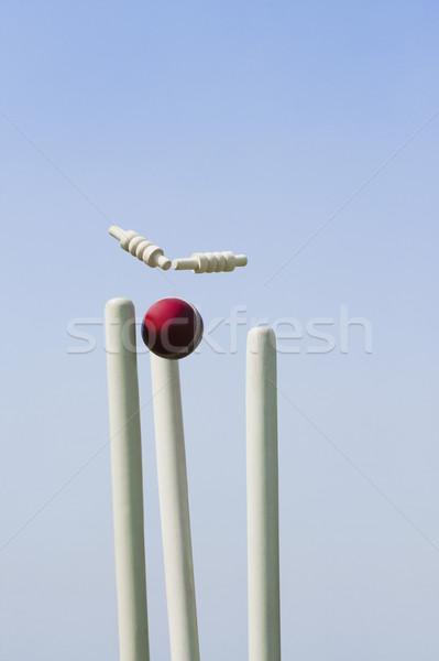 Foto stock: Cricket · pelota · cielo · madera · fotografía · esfera