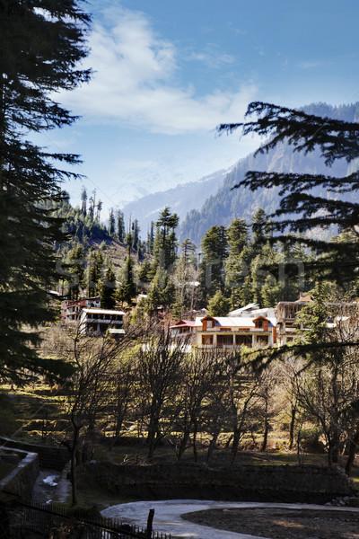 Bâtiments ville Inde arbre forêt nature Photo stock © imagedb
