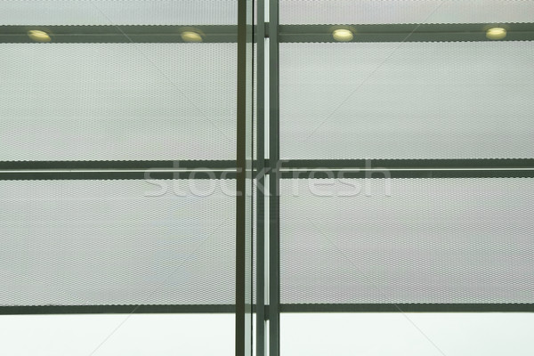 Floresan ışıklar havaalanı salon Paris Fransa Stok fotoğraf © imagedb