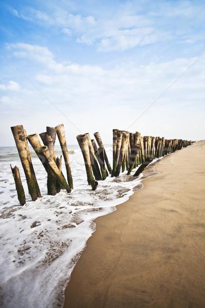 Wooden posts on the beach, Pondicherry, India Stock photo © imagedb