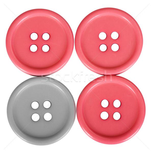 Przyciski moda plastikowe otwór kółko Zdjęcia stock © imagedb