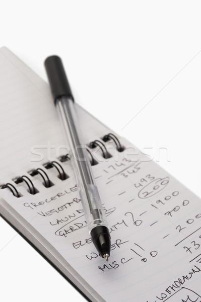 Stift Spirale Notebook Business Bildung Stock foto © imagedb