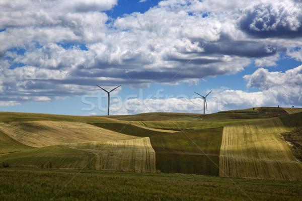 Szélturbinák domb tájkép mező zöld farm Stock fotó © imagedb