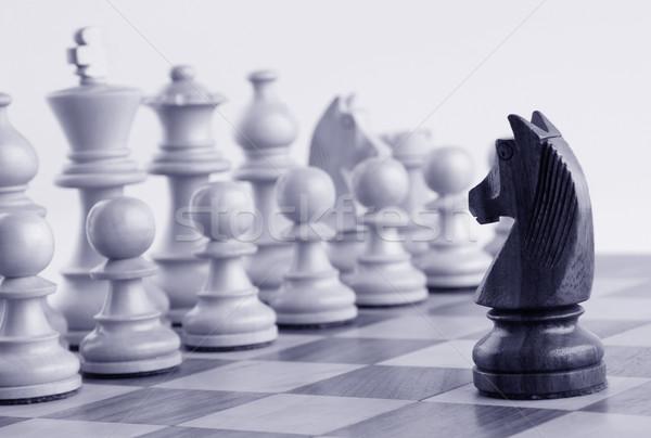 Czarny rycerz biały szachownica Zdjęcia stock © imagedb