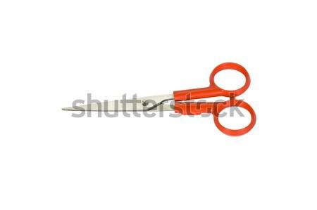 ножницы металл дыра белом фоне крупным планом Сток-фото © imagedb