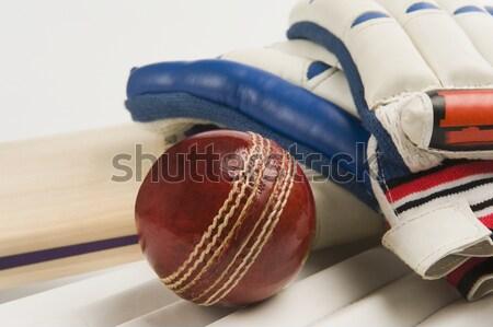 Közelkép krikett labda denevér piros bőr Stock fotó © imagedb