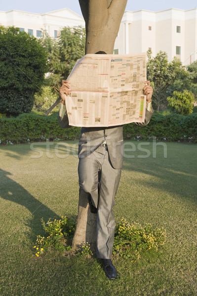 Empresario lectura periódico parque negocios árbol Foto stock © imagedb