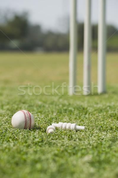 Cricket balle bois blanche sphère extérieur Photo stock © imagedb