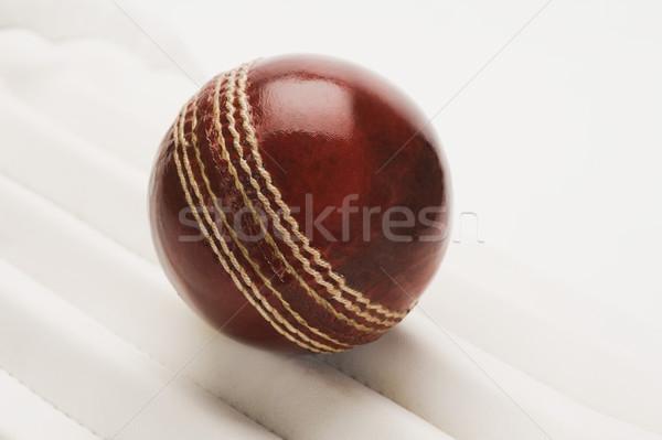 Primo piano cricket palla sport pelle sicurezza Foto d'archivio © imagedb