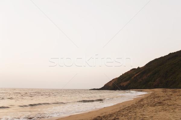 Tengerpart Goa India tenger homok hullám Stock fotó © imagedb