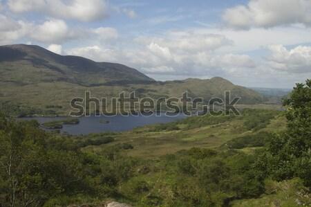 парка республика Ирландия небе трава фотографии Сток-фото © imagedb