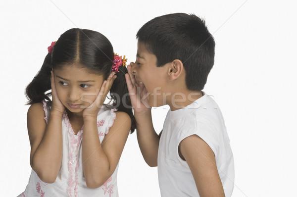 Ragazza orecchie fratello bambini ragazzi Foto d'archivio © imagedb