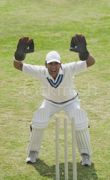 Krikett megnyerő mögött fű férfi sport Stock fotó © imagedb