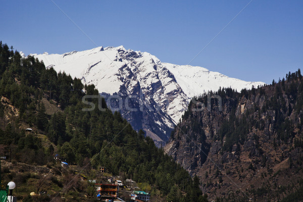 Town with snow covered mountains in the background, Manali, Hima Stock photo © imagedb