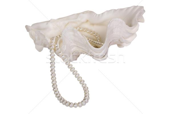 Közelkép gyöngy nyaklánc kagyló divat ékszerek Stock fotó © imagedb