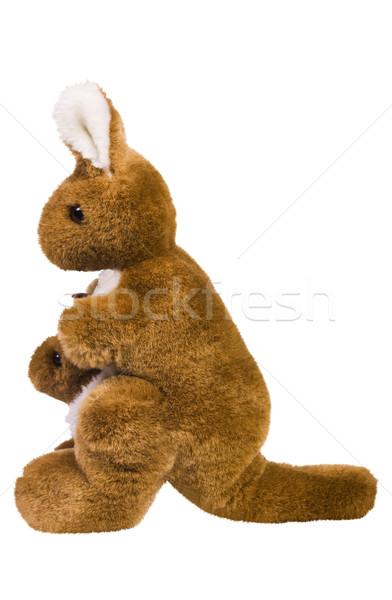 фаршированный кенгуру игрушками игрушку ухода Сток-фото © imagedb
