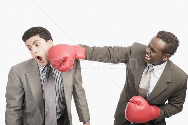 Işadamı boks eldivenleri iş spor öfke Stok fotoğraf © imagedb
