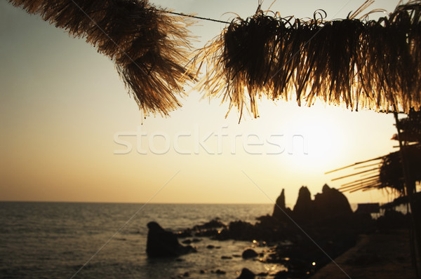 силуэта пород побережье Гоа Индия воды Сток-фото © imagedb