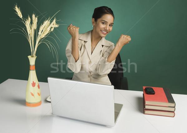 портрет деловая женщина глядя возбужденный служба женщину Сток-фото © imagedb