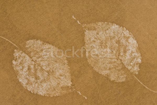 красивой шаблон бумаги портрет улыбаясь Сток-фото © imagedb