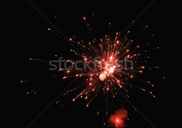 pims_20101106_sa0189.jpg Stock photo © imagedb