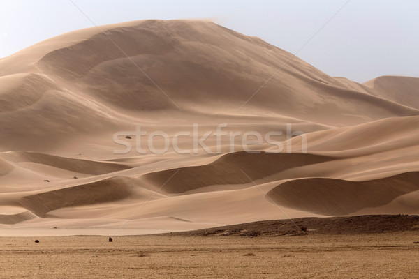 пустыне Намибия Африка песок парка одиноко Сток-фото © imagex