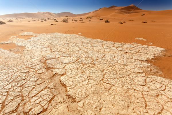 Namíbia deserto África céu paisagem azul Foto stock © imagex