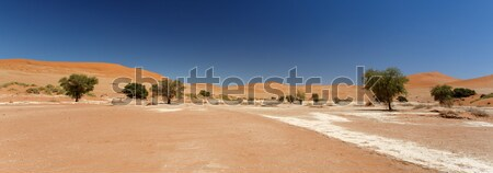 Namibya çöl Afrika gökyüzü manzara mavi Stok fotoğraf © imagex
