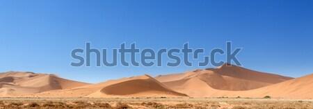Namíbia sivatag Afrika égbolt tájkép kék Stock fotó © imagex