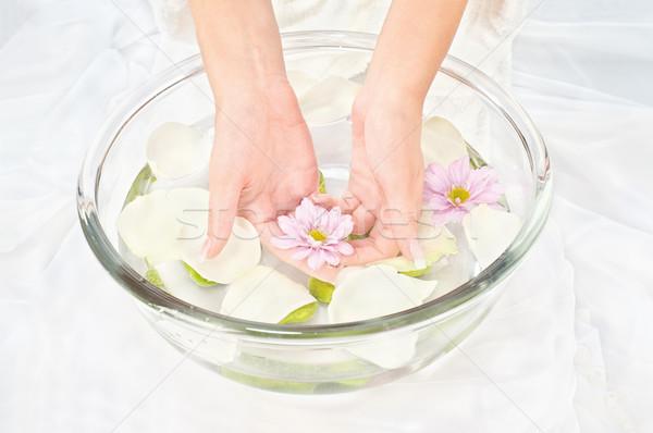 Soothing petal bath Stock photo © imarin