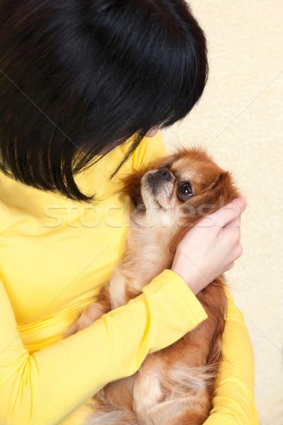 girl and her dog Stock photo © imarin