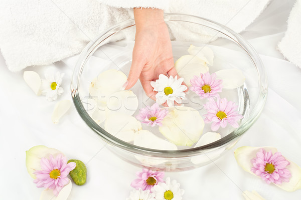 Soothing petal bath Stock photo © imarin