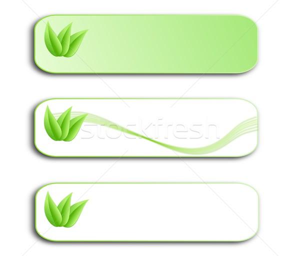 Ayarlamak yeşil menü yaprakları sayfa Stok fotoğraf © impresja26