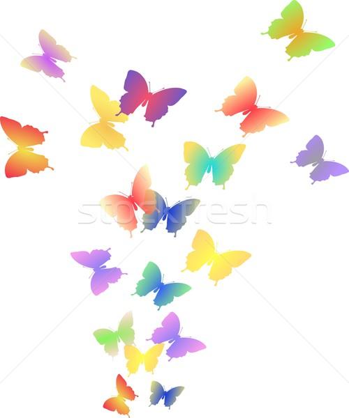 örnek uçuş renkli kelebekler yalıtılmış Stok fotoğraf © impresja26
